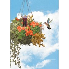 Basket Planter Hummingbird Feeder
