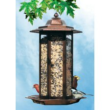 Tall Tulip Garden Lantern Bird Feeder in Rustic Brown (Set of 2)