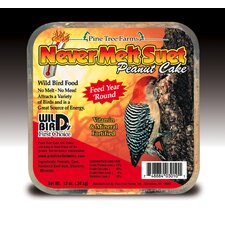 Never Melt Suet Peanut Bird Food