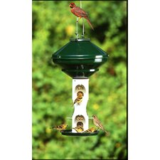 Mixed Seed without Cage without Pole Feeder - 3 Gallons