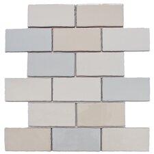 """Antiqua 3"""" X 6"""" Ceramic Wall Tile in Craquelle Mix"""