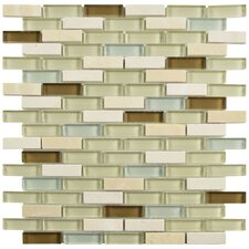 """Sierra 0.5"""" x 1.875"""" Glass and Natural Stone Mosaic Tile in York"""