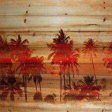 """Landscape & Nature """"Crimson Palms"""" Photographic Print"""