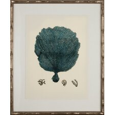 Turquoise Coral II Framed Graphic Art