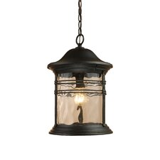 Madison 1 Light Outdoor Hanging Lantern