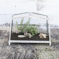 Secret Garden Novelty Terrarium