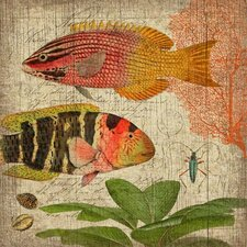 Natural History 1 Wall Art by Suzanne Nicoll Graphic Art Plaque