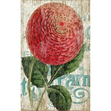 """""""Zinnia Red"""" by Suzanne Nicoll Graphic Art Plaque"""