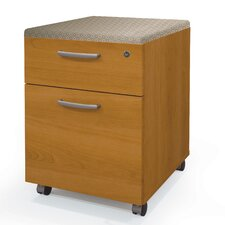 Pro-Biz 2 Drawer Mobile Pedestal