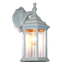 Waterdown 1 Light Wall Lantern
