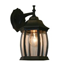 Waterdown 1 Light Wall Lantern