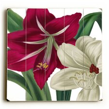 Red and White Flowers Graphic Art