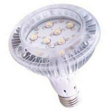 60W Halogen Equivalent Light Bulb