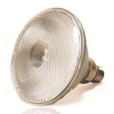 120W Grey Halogen Equivalent Light Bulb