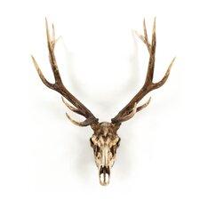 Deer Skull Wall Décor
