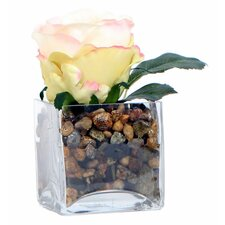 Floral Rose in Square Pot