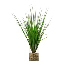 Floral Grass in Round Glass Vase