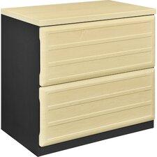 Benjamin 2-Drawer  File Cabinet