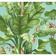 "Ashford Tropics 27' x 27"" Scenic Banana Leaf Wallpaper"