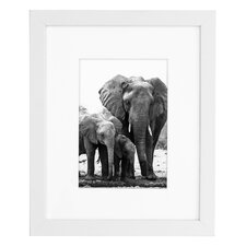 """8"""" x 10"""" White Wood Picture Frame"""