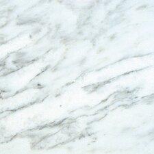 "12"" x 12"" Marble FIeld Tile in Arabescato Carrara"