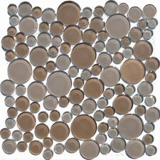 Penny Round Random Sized Glass Pebbles Tile in Biege