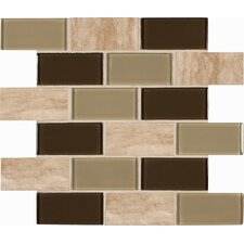 "Pine Valley Mounted 2"" x 4"" Glass Stone Subway Tile in Beige"