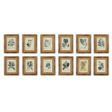 French Market Botanical 12 Piece Framed Graphic Art Set (Set of 12)