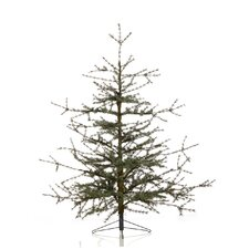 Evergreen 6' Green Tibetan Cedar Christmas Tree