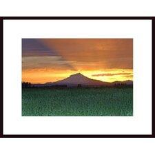 'Mount Shasta 4' by John Nakata Framed Photographic Print