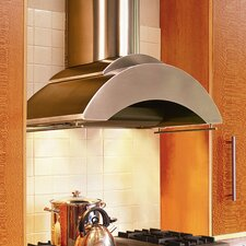Contemporary Series Wall Mount Hood