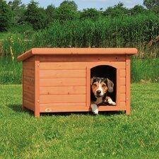 Dog Club House