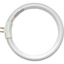 Naturalight (6500K) Full Spectrum Daylight Light Bulb