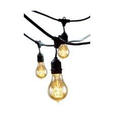 Rachael Incandescent 15 Light Outdoor String Light