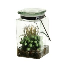 Easter Grass and Sedum Floor Plant in Jar