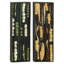 2 Piece Brilliant Designed Dried Wall Décor Set