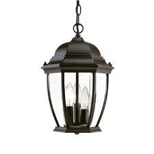 Wexford 3 Light Outdoor Hanging Lantern