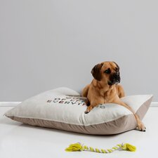 Bianca Green Her Daily Motivation Pet Bed