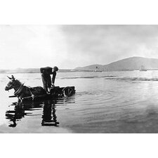 'Donkey Cart - Ireland' Photographic Print