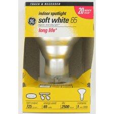 65W 120-Volt (2600K) Light Bulb