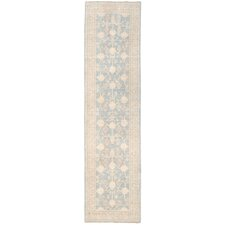 Hand-Knotted Blue/Ivory Area Rug