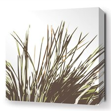 Botanicals Thatch Stretched Graphic Art on Wrapped Canvas
