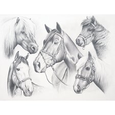 Sketching Pencil By Numbers Advanced Horse Montage Sketching Pencil (Set of 4)