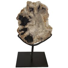 Fossil with Stand Sculpture