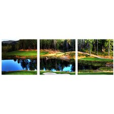 Golf Course 3 Piece Framed Photographic Prints Set