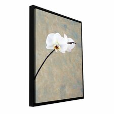 'Orchid Blossom' by Elena Ray Floater Framed Photographic Print Gallery-Wrapped on Canvas