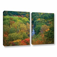 Autumn Stream by David Kyle 2 Piece Photographic Print on Gallery-Wrapped Canvas Set