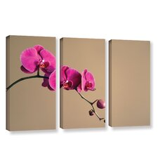 Magenta Orchid by Elena Ray 3 Piece Gallery-Wrapped Canvas Set