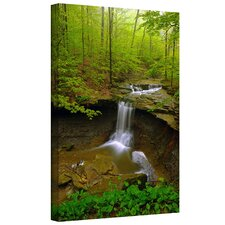 Water Falls by David Liam Kyle Photographic Print on Canvas