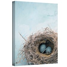 """""""Blue Nest"""" by Elena Ray Photographic Print on Canvas"""